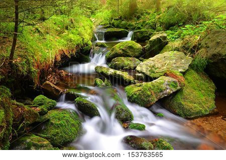 Mountain creek in the National park Sumava-Czech Republic