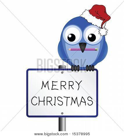 Bird merry christmas
