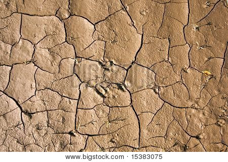 Cracked Earth Background