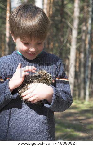 Boy With Hedgehog