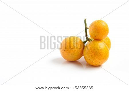 Group of orange Kumquat placed on whte background