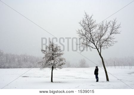 Alone During A Snowstorm