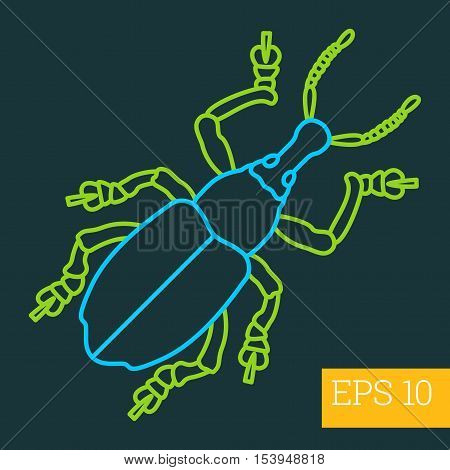 Beetle Insect Outline Vector