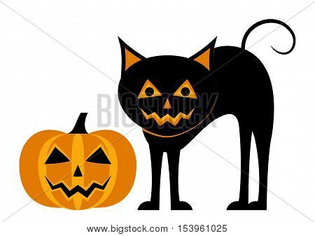 vector halloween pumpkin and cat isolated on white background