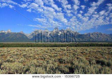 A Teton Sky