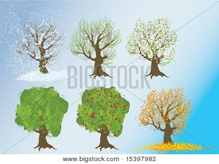 The seasons. Vector illustration