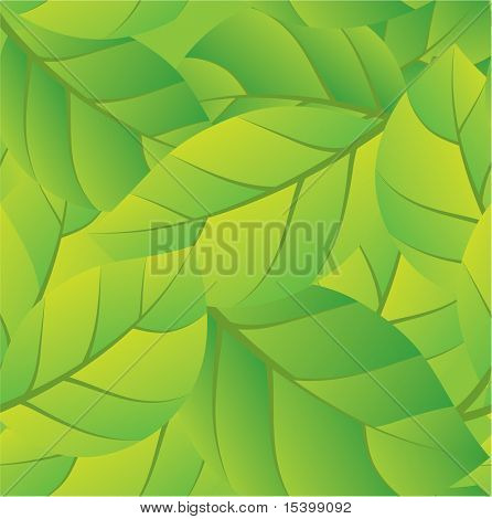 Seamless summer background. Vector.