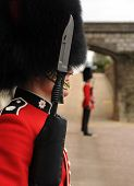 picture of guardsmen  - 7th May 2010 - JPG