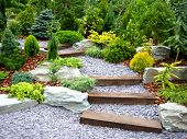 stock photo of planting trees  - Beautiful designer garden with fresh fern plants and stones - JPG