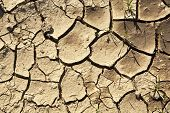 stock photo of loam  - pattern of cracked dry earth of loam - JPG