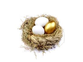 picture of nest-egg  - Golden egg in the nest isolated on white - JPG