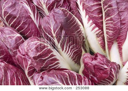 Red Lettuce Background