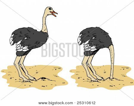 Cartoon Ostrich With Head Below Sand