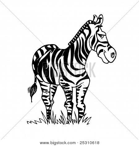 Cartoon Zebra With A Smiling Face