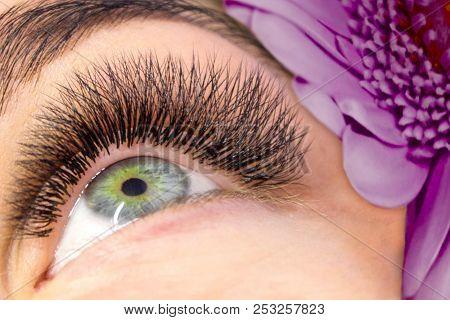 poster of Eyelash Extension Procedure. Woman Eye With Long False Eyelashes. Close Up Macro Shot Of Fashion Eye