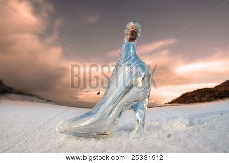Glass Slipper On White Snow Covered Golf Course