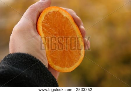 Holding An Orange