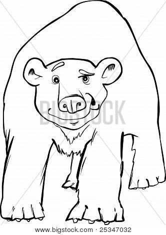 Polar Bear Coloring Page