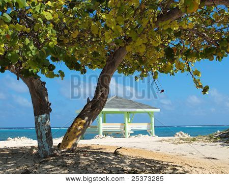 Cayman Islands Beach - East End