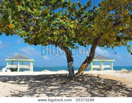 Playa de extremo del este de Islas Caimán