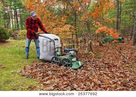 Senior aspirar hojas