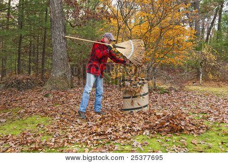 Senior rastrillar las hojas