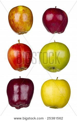 Six Different Apples