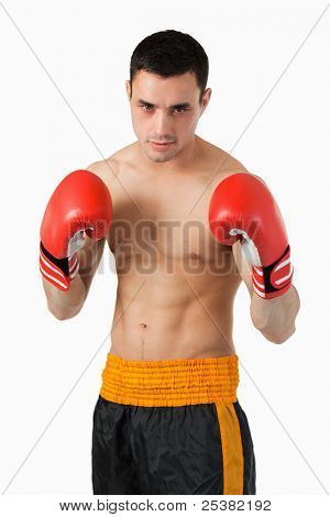 Young boxer in fighting stance against a white background