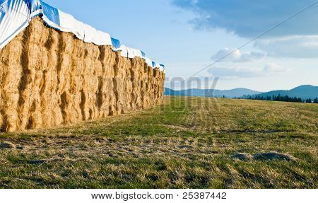 Large Hay Bails