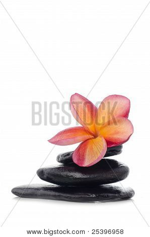 Flower With Zen Stones