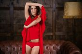An Unbelievable Sensual And Beautiful Young Girl In A Red Dress. A Woman Is Posing And Undressing In poster
