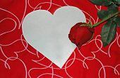 foto of valentines day card  - valentine day
