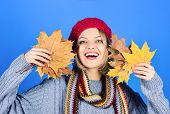 Autumn. Happy Woman With Maple Leaves. Autumn Mood. Smiling Woman With Autumn Leaf. Yellow Maple Lea poster