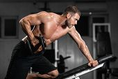 Man Trains In The Gym. Athletic Man Trains With Dumbbells, Pumping His Biceps poster