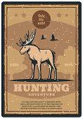 Hunting Adventure Retro Grunge Poster For Hunter Sport Club Promotion. Wild Deer, Elk Or Moose Anima poster