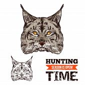 Lynx Animal Sketch For Hunting Sport Open Season. Wild Cat Or Bobcat Predator Head Isolated Icon, Wi poster
