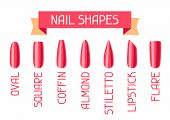 Acrylic Nail Shapes Set. Various Types Of Manicure. poster