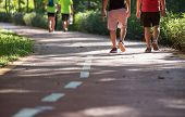 Mid Aged People Walking At Sunny Park Trail For Morning Exercise And Weight Loss poster
