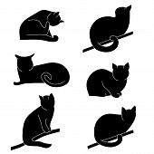 Vector Set Of Cat Silhouettes. Different Postures: Sitting, Lying, Resting, Playing, Hunting. Cat Li poster
