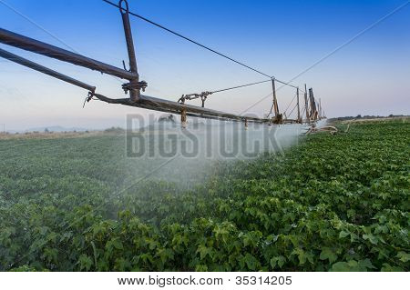 Pivoting Irrigation System