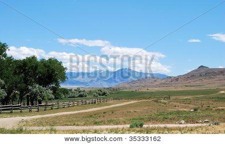 Antelope Road