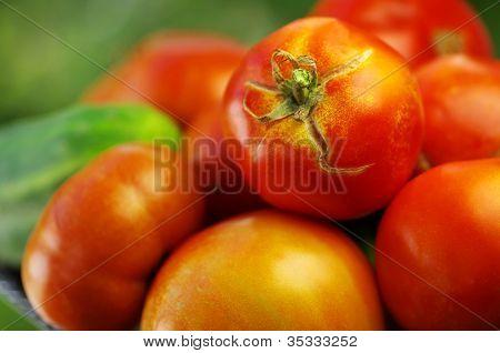 Closeup Of Red Tomato
