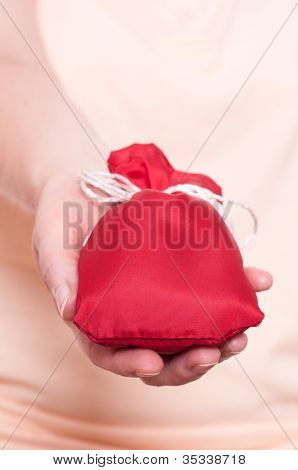 Hand Is Holding A Red Bag