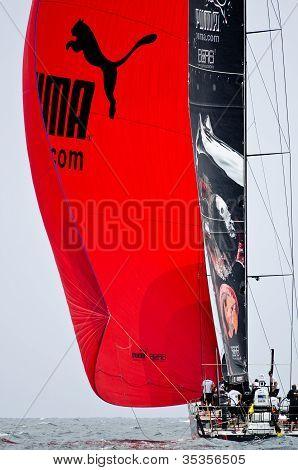 Puma Under Spinnaker.  (volvo Ocean Race 2011-2012)