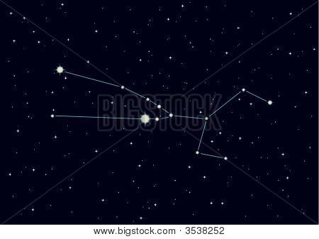 "Vector Illustration Of Constellation ""Taurus"""
