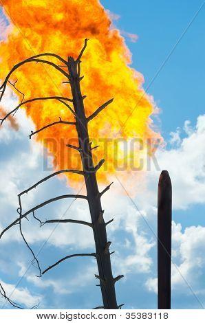 Oil torch.