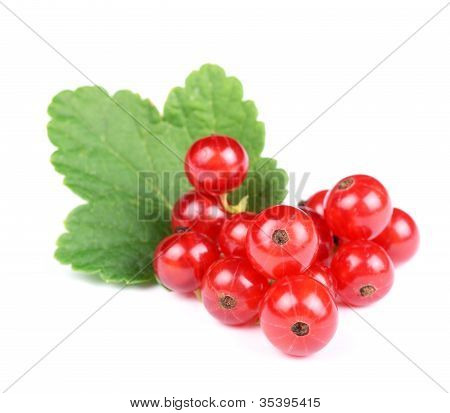 Heap Of Fresh Red Currant with Green Leaf