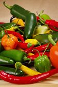 image of poblano  - Stock image of chilli pepper still life very colorful an varied  - JPG