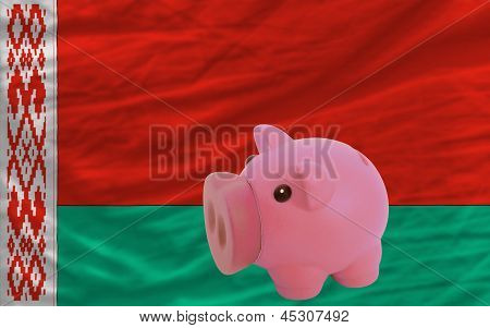Piggy Rich Bank And  National Flag Of Belarus