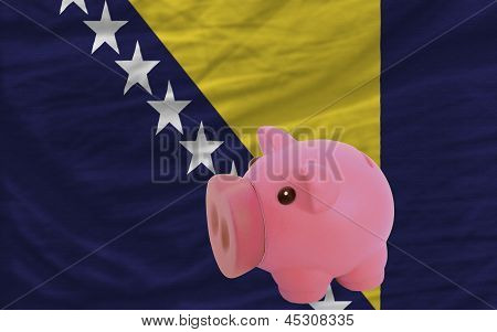 Piggy Rich Bank And  National Flag Of Bosnia Herzegovina